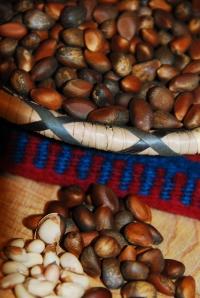 Pinon seeds