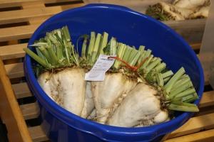 Sugar beet entry